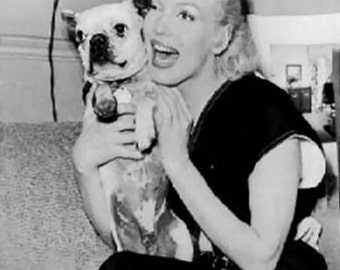 Vintage Marilyn Monroe with Boston Terrier Photo Decoupaged on Wood