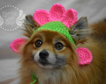 Pet Flower Beanie (XS-XL) Any Colors