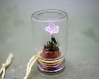 Miniature White Flower in Glass Bottle
