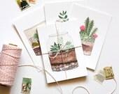 Secret Garden Succulent Terrarium Postcard Prints - Set of Four