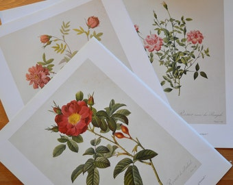 Book pages with printed roses