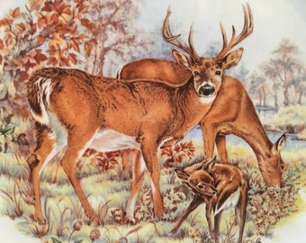 Vintage Kitsch Deer Plate Barratts of Staffordshire
