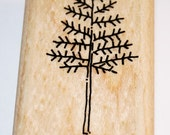 Evergreen/Christmas Tree Rubber Stamp from Stampin Up