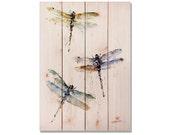 "Dragonfly Art Print, Watercolor Dragon Flies on Wood, Solid Cedar Indoor and Outdoor Safe Wall Art, 14""x20"" (DCTD1424)"