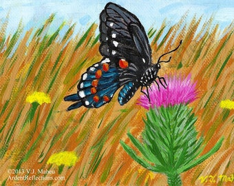 Butterfly thistle, child's room art, butterfly painting, nature decor,prairie,wildlife painting,wildlife wall art,wildflower art, Item #BTO1