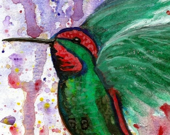 Wall Art, 8 x 10 Art, Art Print, Hummingbird, Splash background, Watercolor Art, Bird Art, Wildlife Art, Animal Art,  Item #HBSP-2015