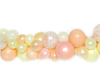 DIY Balloon Garland Kit - Peachy Keen