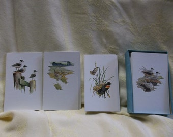 Vintage Boxed Note Cards of Water Fowl, Blank Inside, Set of 18, Francis Lee Jaques, T