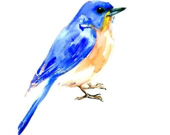 Bluebird original one of a kind watercolor painting, eastern bluebird wall art 10 X 8 in