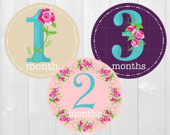 Baby Milestone Stickers, Blooming Roses - Monthly Baby Stickers, Monthly Milestone, Baby Shower Gift, Baby Photos, Monthly Bodysuit Stickers