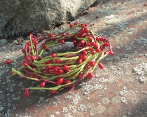 Pip Berry picks - 15 branches - flower picks - Red - Craft supply - DIY - artifical flowers