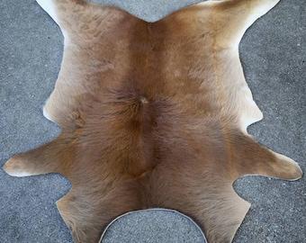 Tanned Calf Pelt