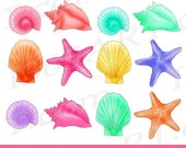 50% OFF SALE Seashell cli...