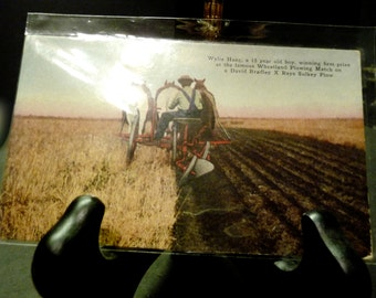 Final clearance -Antique Post Card- 15 yr. old boy wins Wheatland Plowing contest