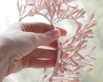Fantasy corals
