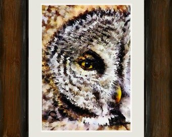 "Great Gray Owl watercolor print: 11x15"" watercolor print of woodland owl Grey Grey owl art print Owl face print"