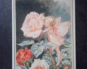 VILLEROY & BOCH fairy