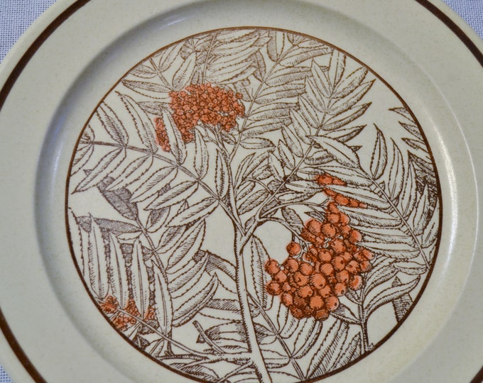 Vintage Anchor Hocking Mountain Ash Dinner Plate Set of 6 Ironstone Made in the USA PanchosPorch