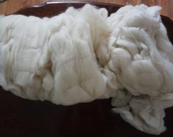 Romney Shetland lamb roving 1 pound 3.60 oz