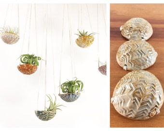 "air plant hanging planter / air plant holder / textured 3"" wide / pearl"