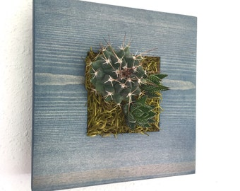 CUSTOM COLOR: Small Square Succulent + Cacti Vertical Garden | Vertical Planter | Living Wall | Wall Planter | Hanging Planter | Wood