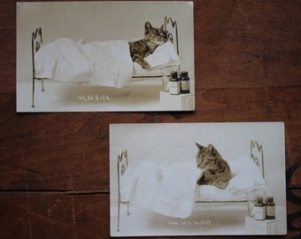 Pair of Real Photo Postcards Depicting Sick Cat Posing in Bed