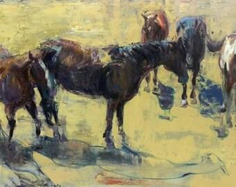 Morning Herd