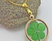Gold Charm Necklace with a Real Genuine Five Leaf Clover - GN-5J