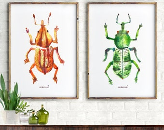 Bug Watercolor painting, set of 2, Insect art, Weevil art print, Children room art, Beetle, Entomology, Boy room decor, Nature