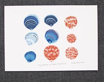 Dog Cockles on Fistral Strandline   Wall art Print   Illustration by Alison Bick in Cornwall beach art