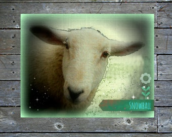 Handmade Printable Wall Art, Portrait of a Lamb, Scotland, Digital Art, Highlands