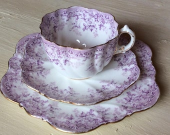 Vintage Shelley Wileman & Co or Paragon Unmarked Edwardian Trio Cup Saucer and Plate Daisy Shape