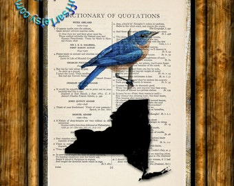NEW YORK State Map, Bird, Flower & Flag - Vintage Dictionary Page Art Print Upcycled Page Print