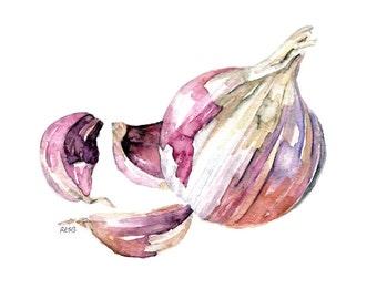 "Garlic Painting - Print from Original Watercolor Painting, ""Garlic Clove"", Kitchen Decor, Red Garlic, Kitchen Art"