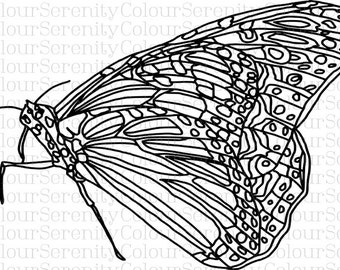 Adult Coloring Page - Butterfly 2 - Printable Instant Download #23
