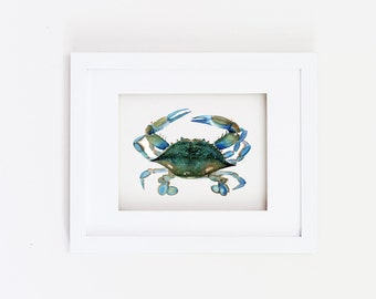 Matted 11x14 Watercolor Blue Claw Crab Print