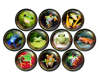 """Frogs in Bubbles Pin Back Button Badge or Fridge Magnet (1"""" or 1.25"""" Pack of 10)"""