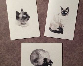 Set of 12 Handmade Blank Siamese Cat Print Note Cards