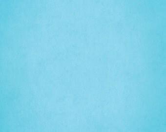 Caribbean Blue Color Etsy