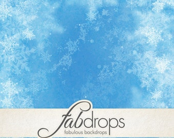 3x4 Scenic Photo Backdrop of Frozen Snowflake - FabVinyl 3x4ft (FV5037)