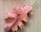 The Forest Floor - Oak leaf in Cherry wood, wall art, wall decor
