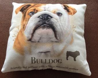 Bulldog mini cushion