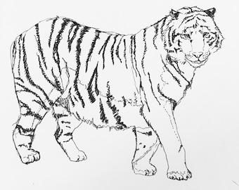 Hand-drawn original tiger sketch