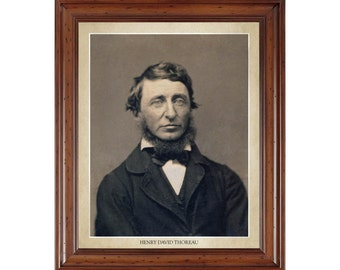 Henry David Thoreau portrait; 16x20 print on premium heavy photo paper