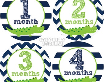 Baby Month Stickers, Monthly Baby Stickers, Monthly Milestone Stickers, Baby Monthly Stickers, Baby Belly Stickers, Alligator Boys