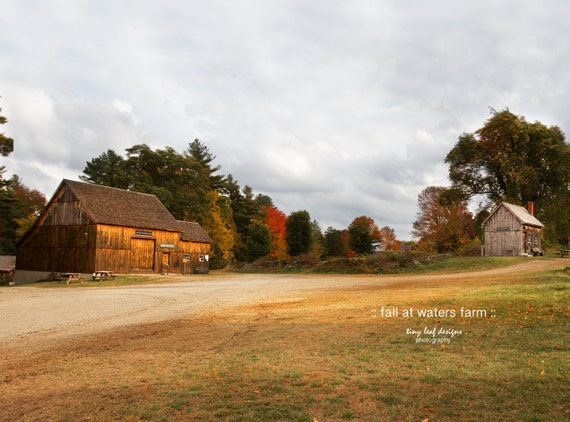 Darling Barn in Fall Sutton, MA Original Photograph