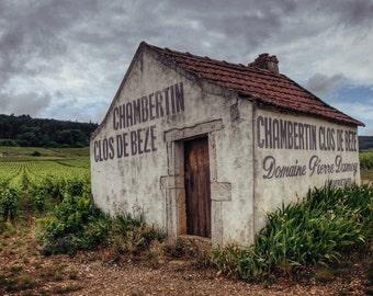European Travel Photography, Provence, France, Vineyard, Instant Download, Digital File, Printable Art, No.48