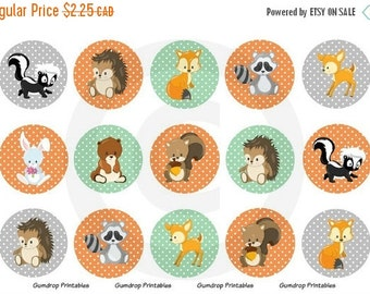 30%OFF Woodland Animals Bottle Cap Images ~ Instant Download 4x6 inch ~ 1 Inch Circles ~ Hairbow Centers ~ DIY ~ Printable Image Sheet WA-18
