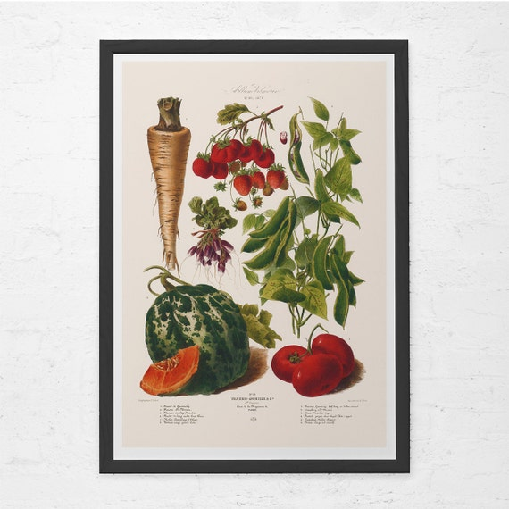 Vintage kitchen print food lovers gift kitchen wall art Gifts for kitchen lovers
