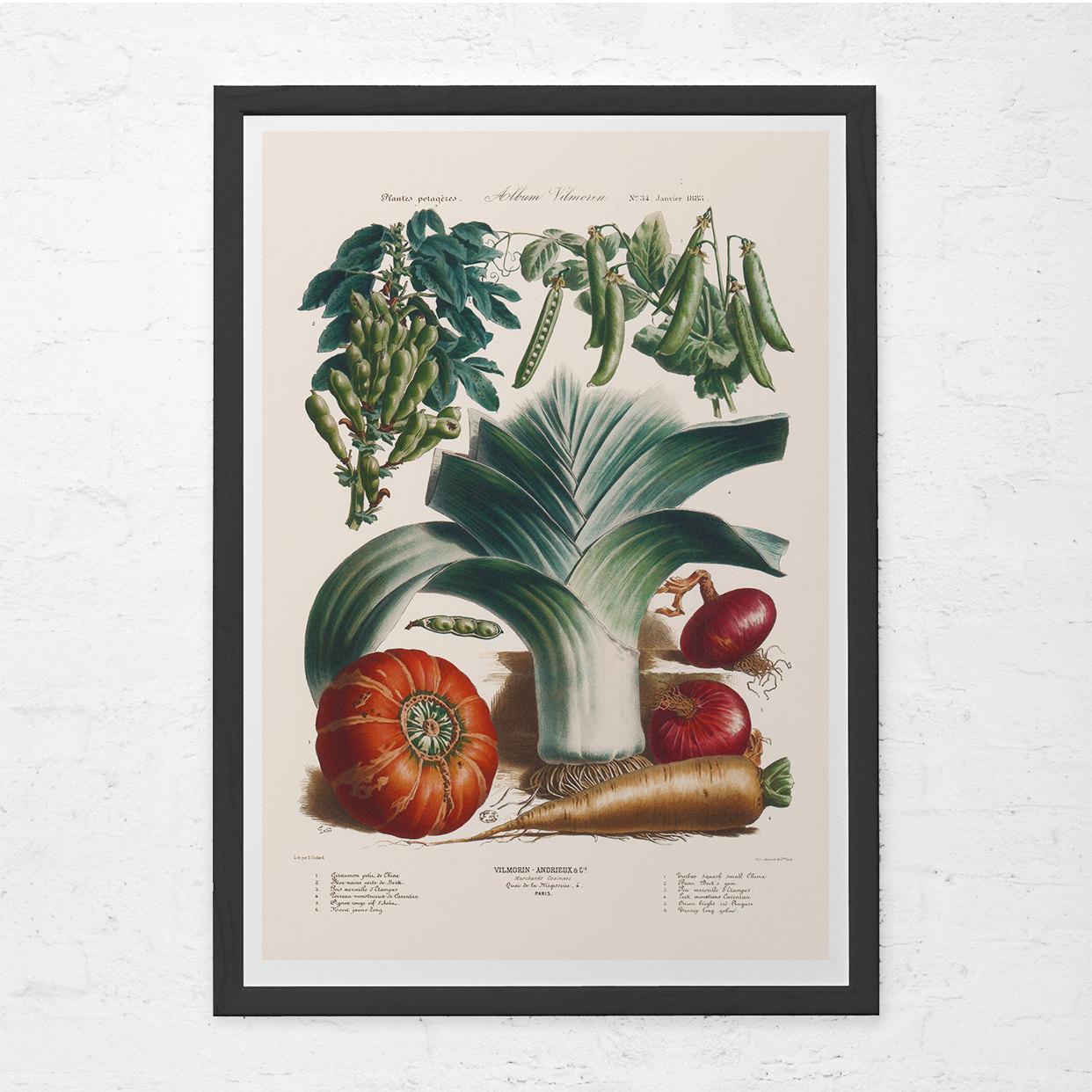 ANTIQUE KITCHEN PRINT Food Lovers Gift Kitchen Wall Art